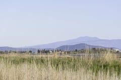 Paisagens da reserva natural de Diaccia Botrona Foto de Stock