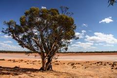 Paisagens de Austrália Foto de Stock