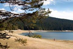 Paisagens de Montenegro - lago preto Durmitor imagem de stock royalty free