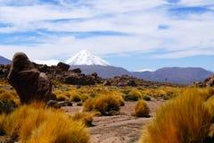 Paisagens do deserto de Atacama, o Chile foto de stock