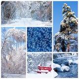 Paisagens do inverno Imagens de Stock Royalty Free