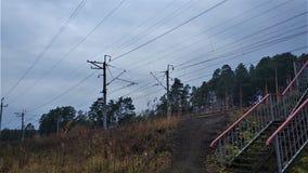 Paisagens do inverno na floresta de Ural em um dia ensolarado imagem de stock
