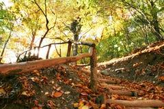 Paisagens do outono Fotos de Stock Royalty Free