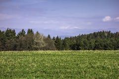 Paisagens eslovacas Imagem de Stock