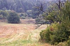 Paisagens polonesas - montes de Roztocze - Dahany Imagem de Stock Royalty Free