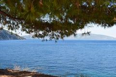 Paisaje: Árbol en la orilla de mar y las montañas Imagenes de archivo
