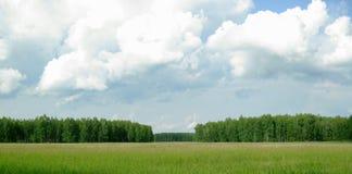 Paisaje - árboles, nubes y cielo azul Fotografía de archivo