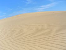 Paisaje 05 del desierto de Taiga Foto de archivo libre de regalías