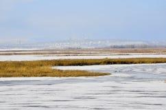 Paisaje 10 del invierno Foto de archivo libre de regalías