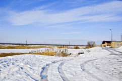 Paisaje 19 del invierno Fotografía de archivo