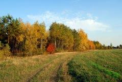 Paisaje 2 del otoño Fotografía de archivo