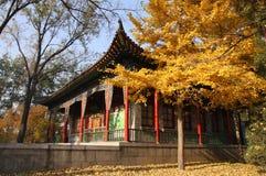 Paisaje 2 del templo de Jinci Foto de archivo