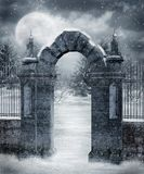 Paisaje 20 del invierno Imagen de archivo