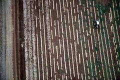 Paisaje aéreo con el campo rural Imagen de archivo