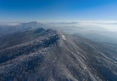 Paisaje aéreo del bosque de la montaña del invierno Fotos de archivo