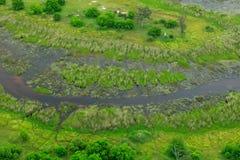 Paisaje aéreo en el delta de Okavango, Botswana Lagos y ríos, visión desde el aeroplano Vegetación verde en Suráfrica Árboles con imágenes de archivo libres de regalías