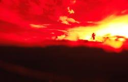 Paisaje abstracto del verano con la silueta de la agua de mar, de las nubes, del cielo y de la palma Imagen de archivo