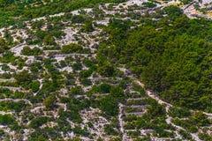 Paisaje adriático - isla Losinj Fotografía de archivo