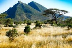 Paisaje africano Imagen de archivo libre de regalías