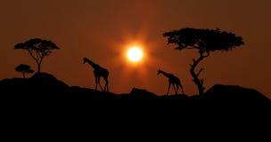 Paisaje africano 2 imagen de archivo