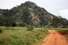Paisaje africano Imágenes de archivo libres de regalías