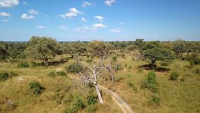 Paisaje africano aéreo del río en Nambwa Namibia almacen de video
