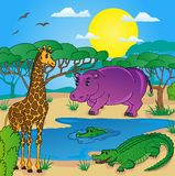 Paisaje africano con los animales Imagen de archivo libre de regalías
