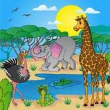 Paisaje africano con los animales Foto de archivo libre de regalías
