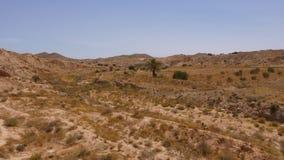 Paisaje africano escénico con el desierto del Sáhara Hierba seca en las montañas arenosas almacen de metraje de vídeo