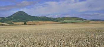 Paisaje agrícola Foto de archivo