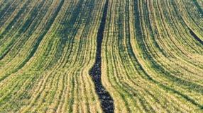 Paisaje agrícola, campos arables de la cosecha Fotos de archivo libres de regalías