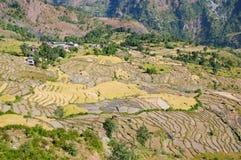Montaña típica agrícola Imagen de archivo