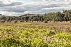 Paisaje agrícola de las balas de heno Fotografía de archivo