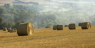 Paisaje agrícola del campo de maíz de Haybales Fotografía de archivo