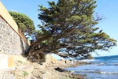 """Paisaje agradable en el  del coast†del """"blue en Francia Fotos de archivo libres de regalías"""