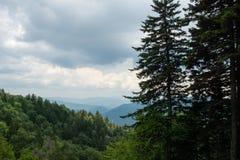 Paisaje ahumado de la montaña Fotos de archivo