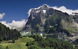 Paisaje alpestre de la montaña Foto de archivo