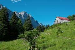 Paisaje alpestre de la montaña del verano foto de archivo
