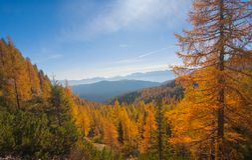 Paisaje alpestre del otoño fotos de archivo
