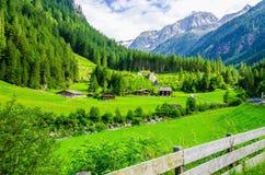 Paisaje alpino con los prados verdes, montañas, Austria Fotos de archivo libres de regalías