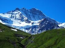 Paisaje alpino de la gama de montañas cerca del pueblo de GRINDELWALD en las MONTAÑAS suizas de la belleza en SUIZA Foto de archivo libre de regalías