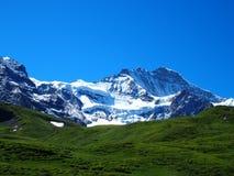 Paisaje alpino de la gama de montañas cerca del pueblo de GRINDELWALD en las MONTAÑAS suizas de la belleza en SUIZA Fotografía de archivo libre de regalías
