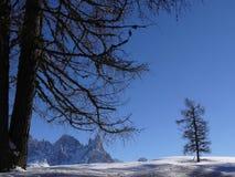 Paisaje alpino de las dolom?as con nieve Trentino fotografía de archivo libre de regalías
