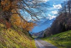 Paisaje alpino del otoño con el camino en montañas Imagen de archivo libre de regalías