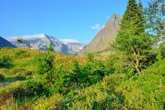 Paisaje alpino del Parque Nacional Glacier Fotografía de archivo