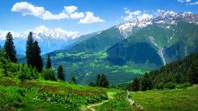 Paisaje alpino del valle verde Día de verano en las montañas foto de archivo