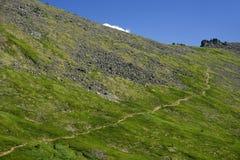 Paisaje alpino en las montañas de Altai, julio de 2016 Fotos de archivo