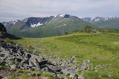 Paisaje alpino en las montañas de Altai, julio de 2016 Fotos de archivo libres de regalías