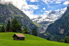 Paisaje alpino hermoso con las montañas cubiertas por la nieve en Grindelwald Fotos de archivo libres de regalías
