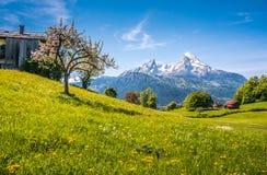 Paisaje alpino idílico con los prados verdes, los cortijos y los tops coronados de nieve de la montaña Imagenes de archivo